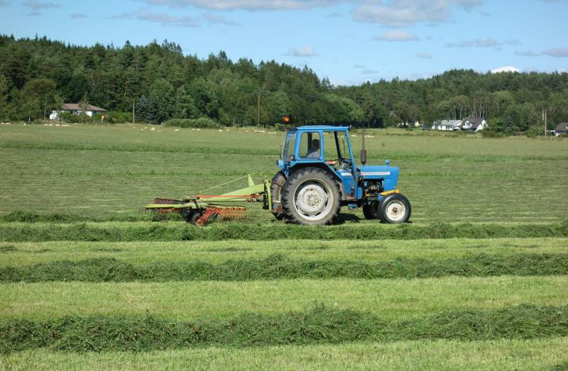 New generation of grass could boost farm efficiency and cut emissions
