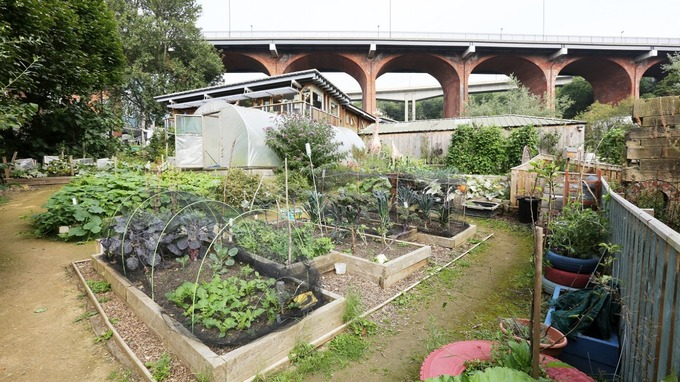 Community urban farm urges public to back their project in national vote