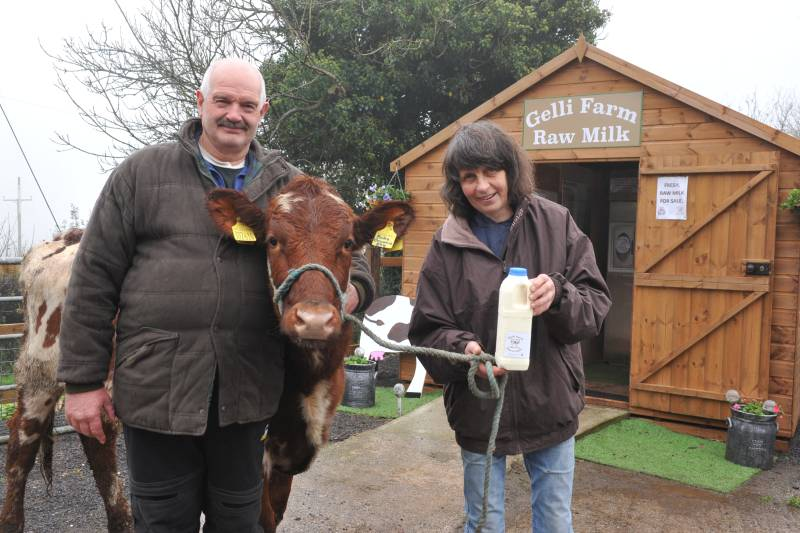 Raw milk sales secure future of Welsh family farm