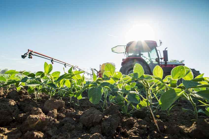 Rapid increase in UK pesticide use, figures show