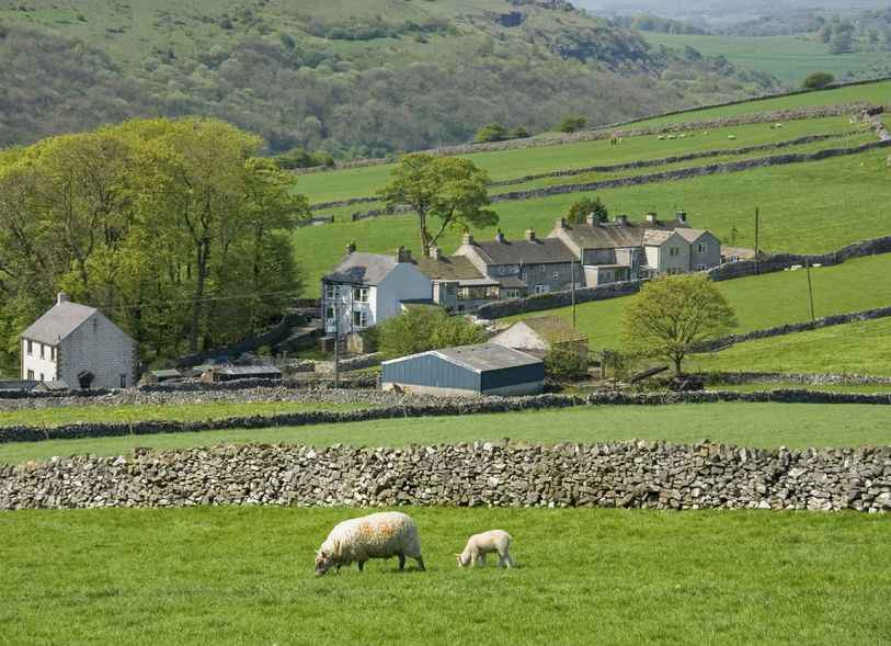CAP 'not fit for purpose' due to steep decline of small farms, report warns