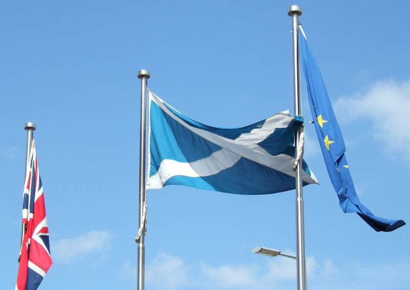 Brexit is 'greatest threat' to Scottish farming, SNP warns