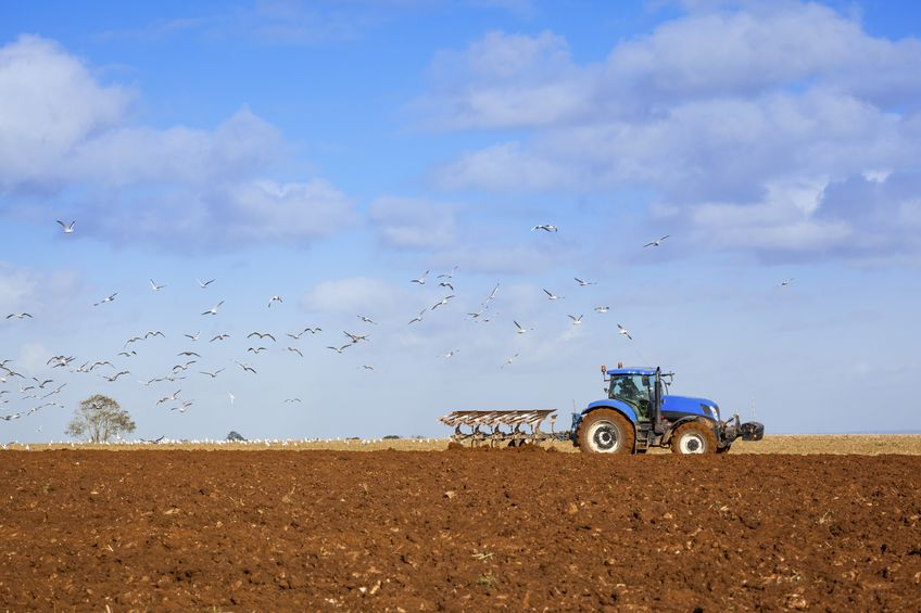 Industry reaction to Gove's farm subsidy announcement