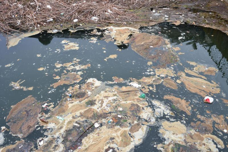 Farmer fined £9,500 for allowing 'serious pollutant' to enter river