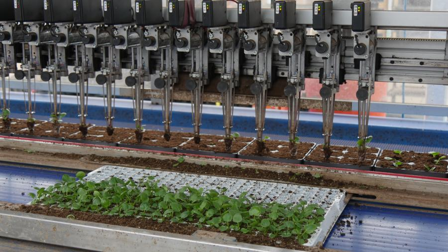 Growers turning to emerging developments in automation to battle dwindling labour