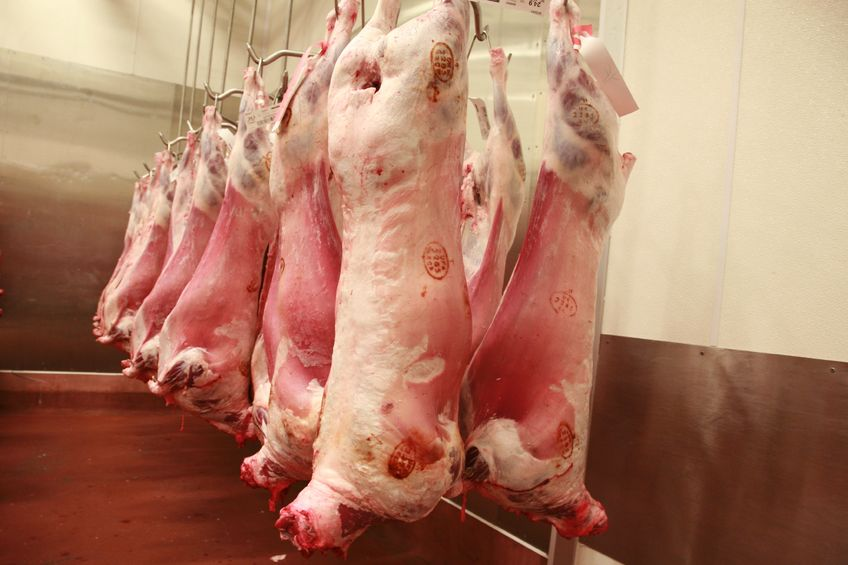 Charity calls for stunning before slaughter to become 'universal requirement'