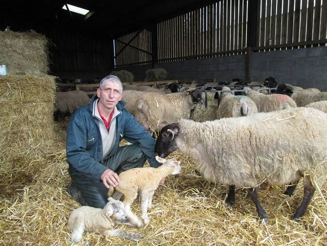 National Sheep Association appoints north Devon sheep farmer as Chairman