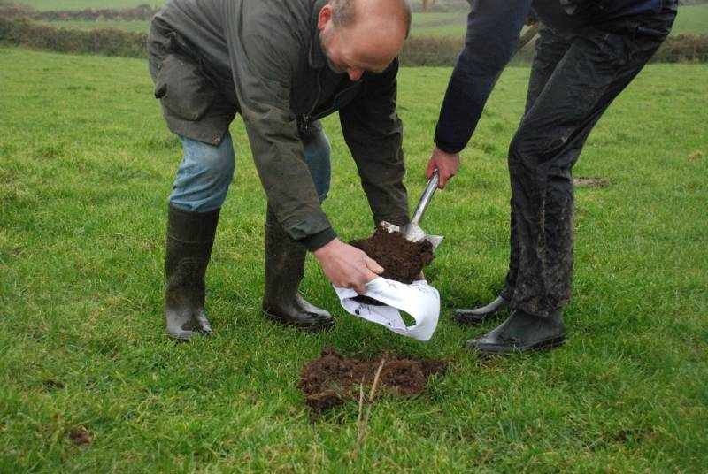 Cornish farmers bury underpants in soil to help with grassland management