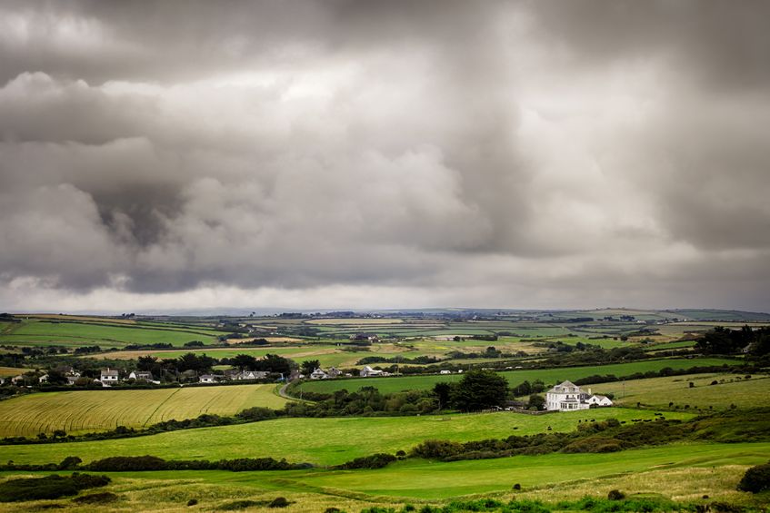 Pockets of strength in farmland market but prices a 'postcode lottery'