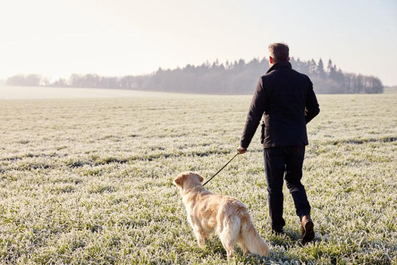 NFU Mutual has launched a campaign urging dog owners to keep their pets on a lead at all times