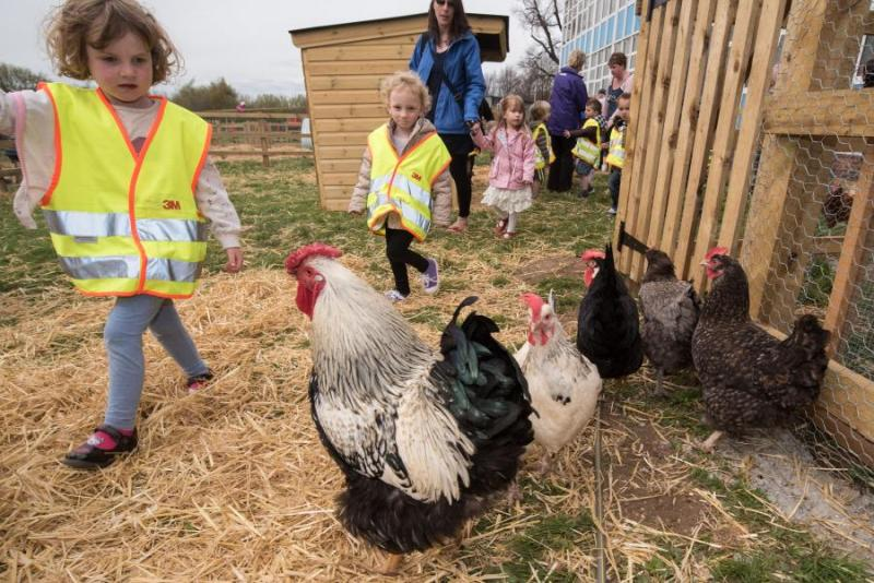 The farming industry has said food production should be a core part of the national school curriculum