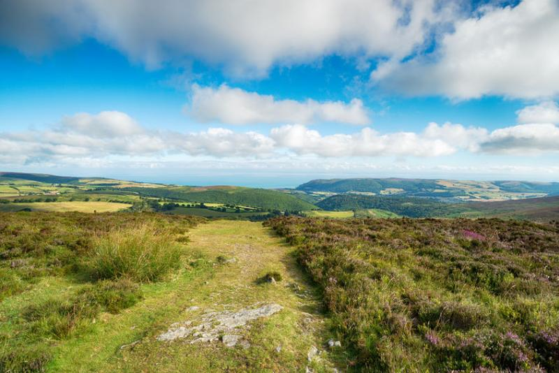 Farmers will 'enhance' Exmoor's landscape under new proposals