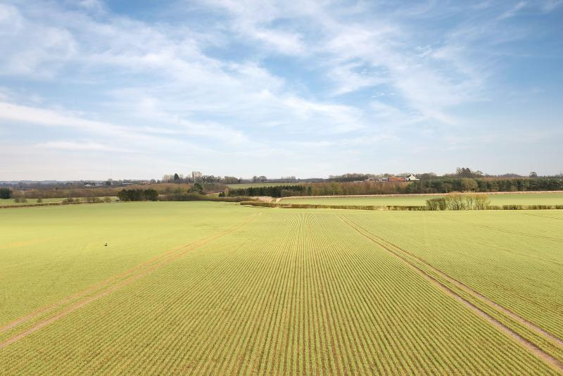 Major Lincolnshire farming estate spanning 3200 acres comes to market
