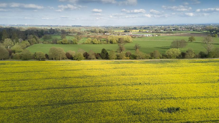 Wealthy farmers should not face 'sudden and dramatic cuts' post-Brexit, CLA says