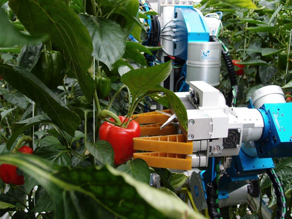 Artificial Intelligence in agriculture expected to grow 24.3 percent by 2024