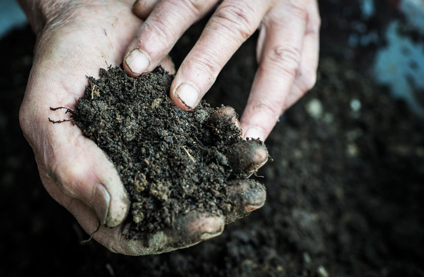 The upcoming agriculture bill will contain a section devoted to restoring and maintaining the UK's soil health