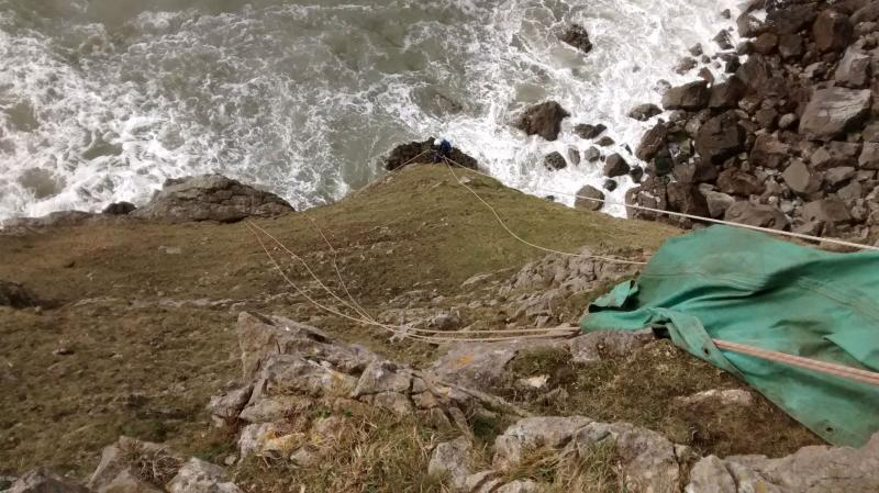 Rope rescue team save sheep in 'extremely challenging rescue'
