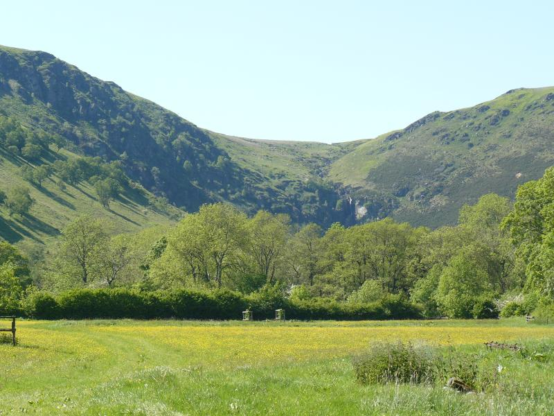 2,025 acres will be available from October 2018 near Llangynog in Powys for a small rental fee