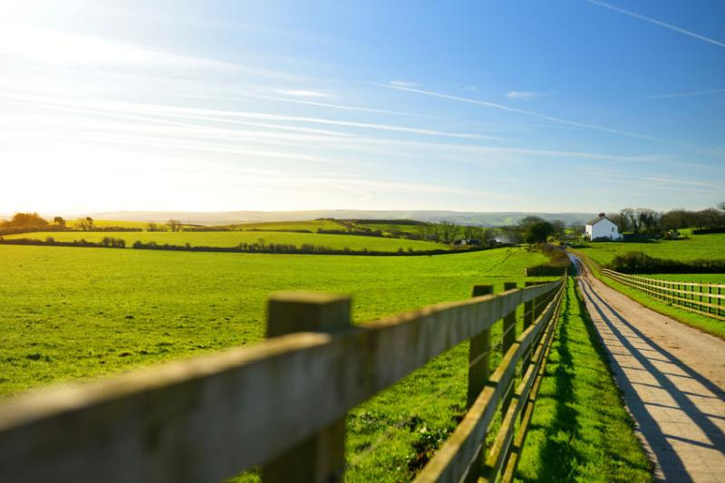 Barriers to rural development revealed in planning survey