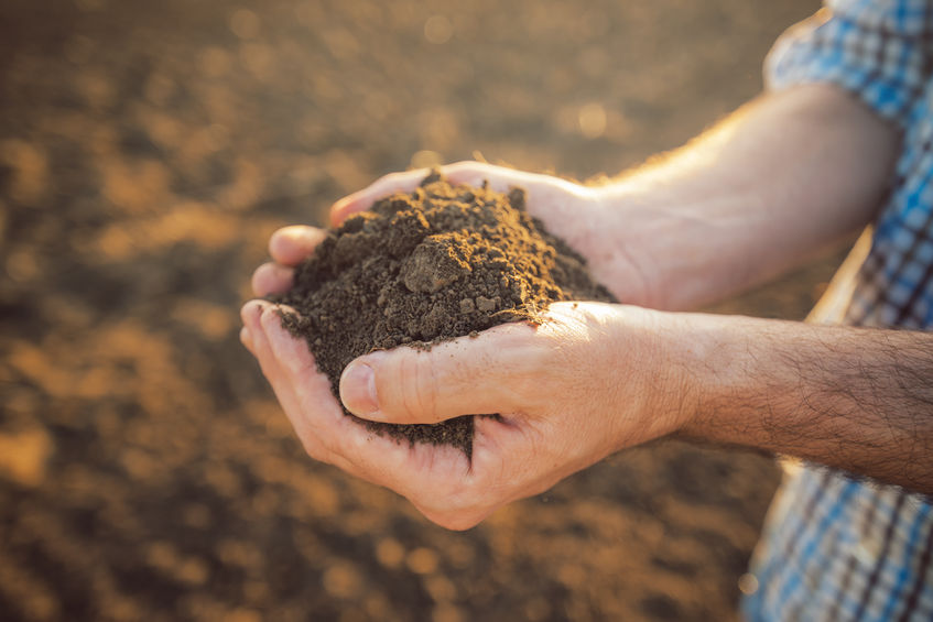 £10m a year needed to protect soil and ensure farming productivity, report warns