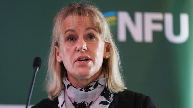 'Engage and empower' farmers to deliver reforms, NFU tells Gove