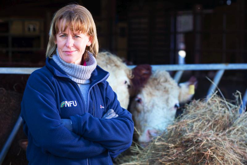 British farmers must be number one supplier to UK market, NFU says