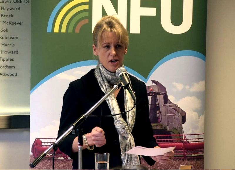 NFU hosts MPs to galvanise political support for productive farming industry
