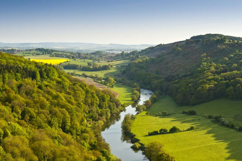 Some farm groups and green campaigners have criticised the government's proposals for a new environment watchdog