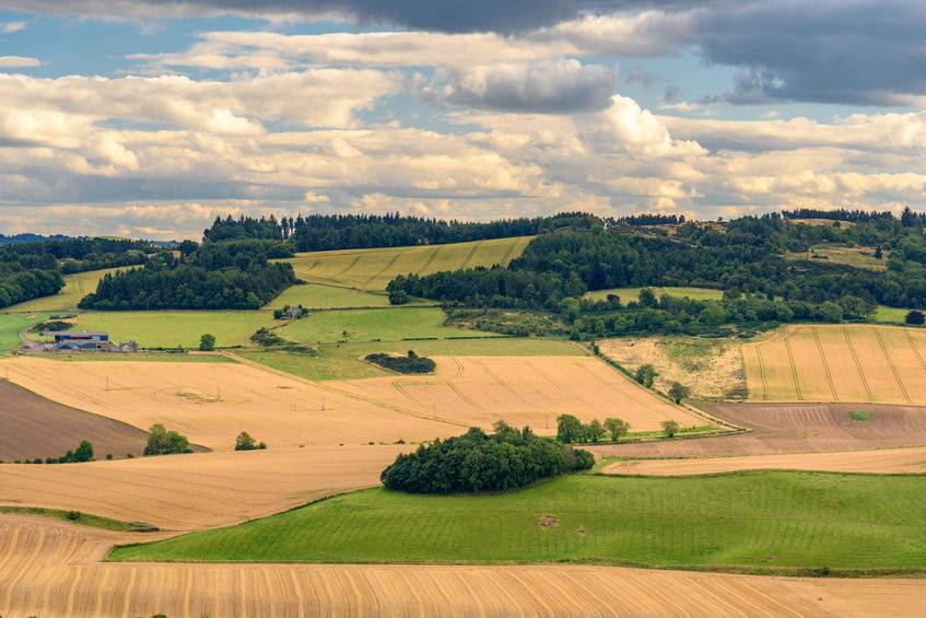 High volume of farmland set to come to market, new data shows