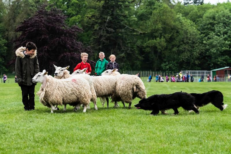 1,200 children attend food and farming event in Scotland