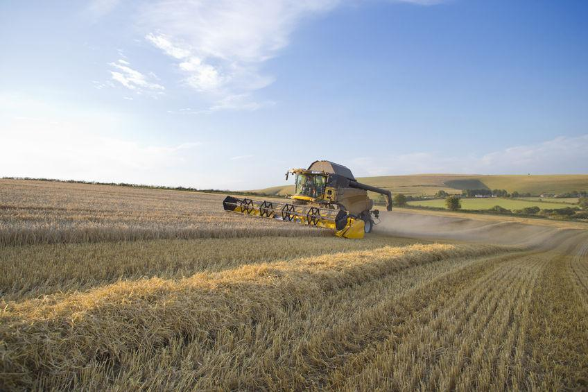 Gove announces £5.3m fund to improve UK crop resilience