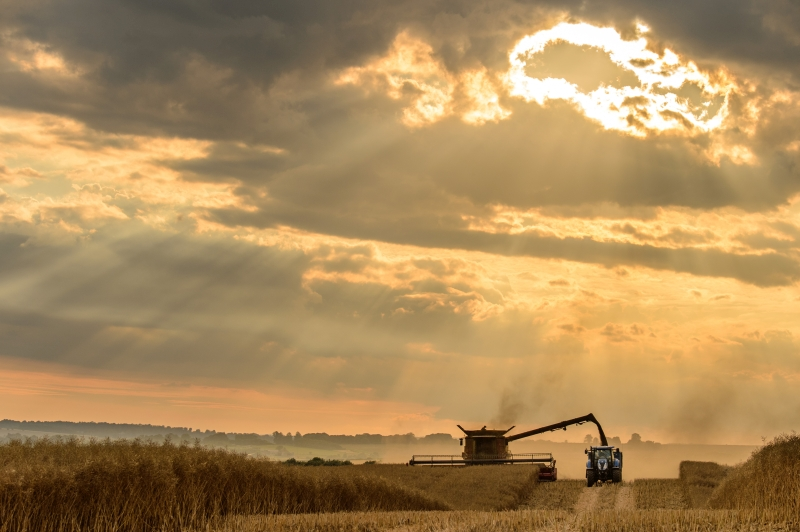 Photo of sunset over Cotswolds farm during harvest wows competition judges