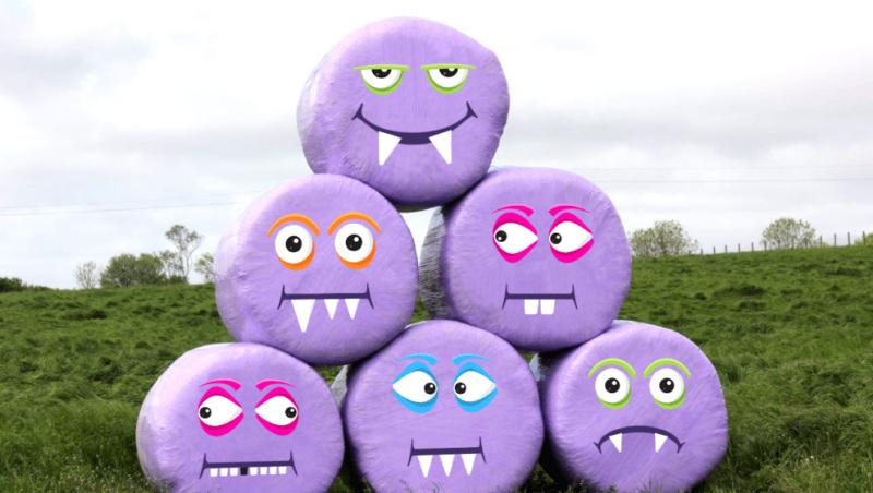 Purple 'critter bales' appear in fields to raise money for children's charity