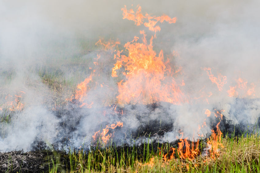 With harvest conditions driest in living memory, NFU Mutual is urgently advising farmers to take extra care to avoid harvest fires