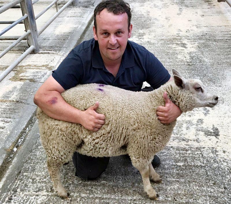Prime lamb raises £1,500 to help fund life-saving treatment for Charlie Robinson