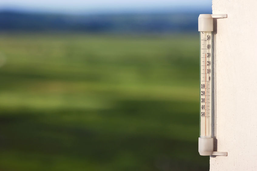 Welsh Tory's call for early BPS to help farmers cope with heatwave