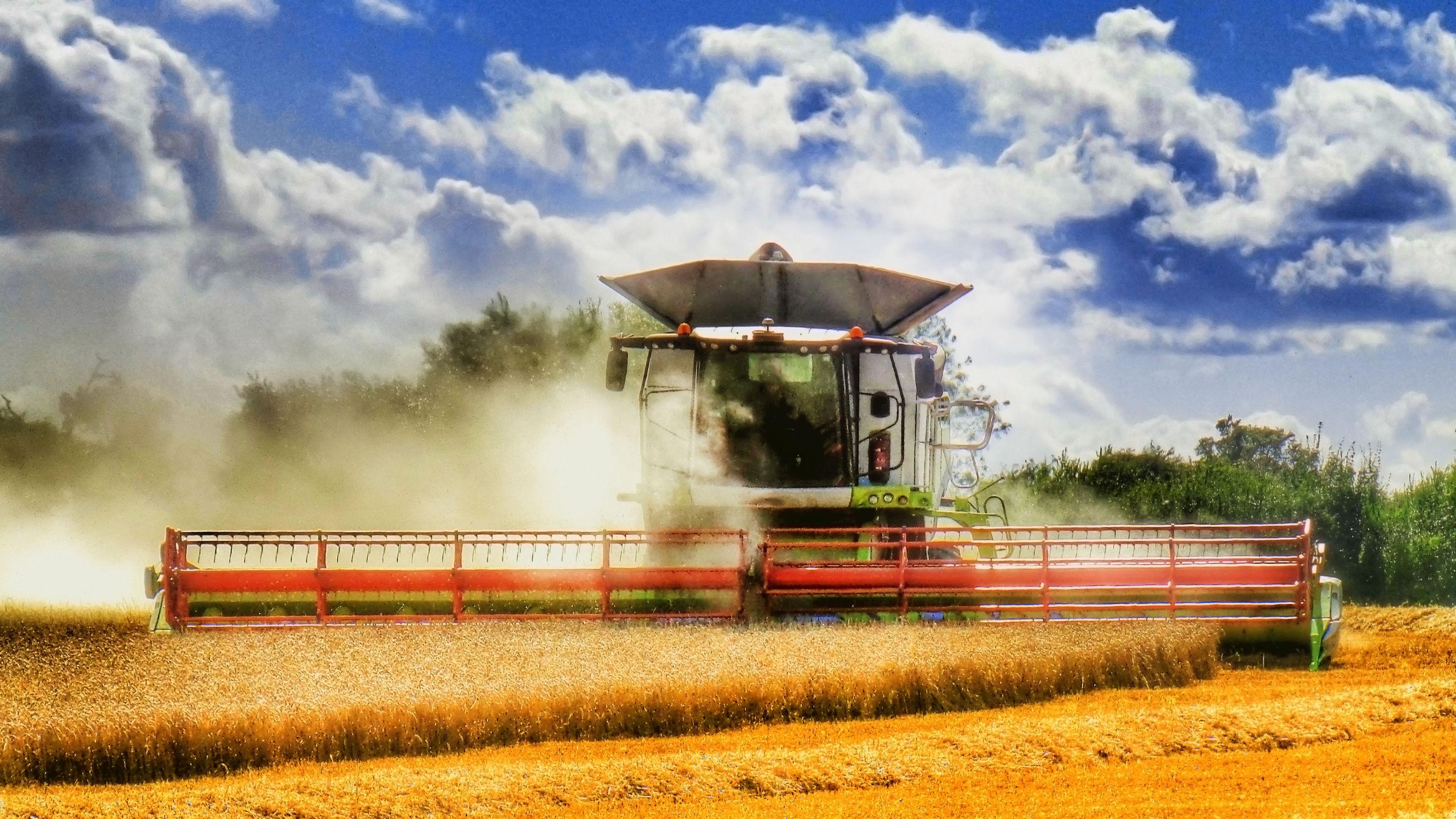 Farmer confidence rises in 2018 despite Brexit uncertainty