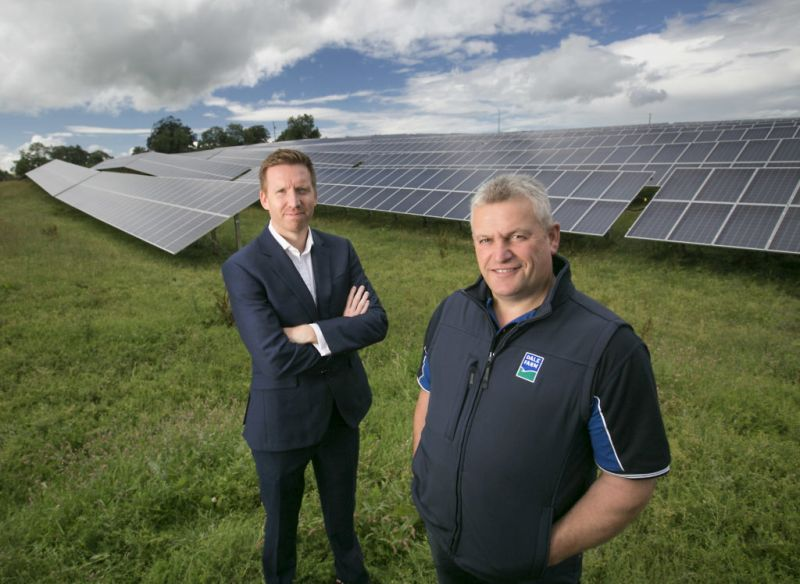 UK dairy cooperative launches largest 'self-consumption' solar farm in Ireland