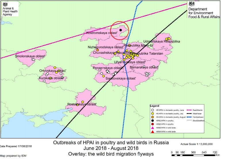 Avian influenza confirmed on Russian poultry farm