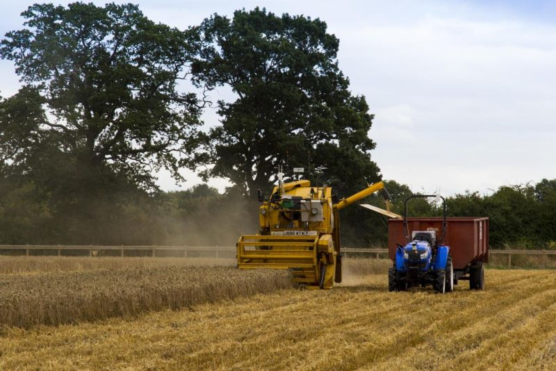 Hands-Free Hectare team successfully harvest second crop