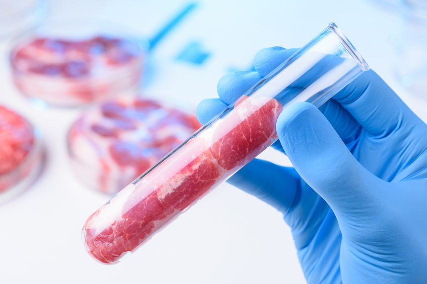 """The new report from the Adam Smith Institute suggests lab grown meat could """"transform the world"""""""