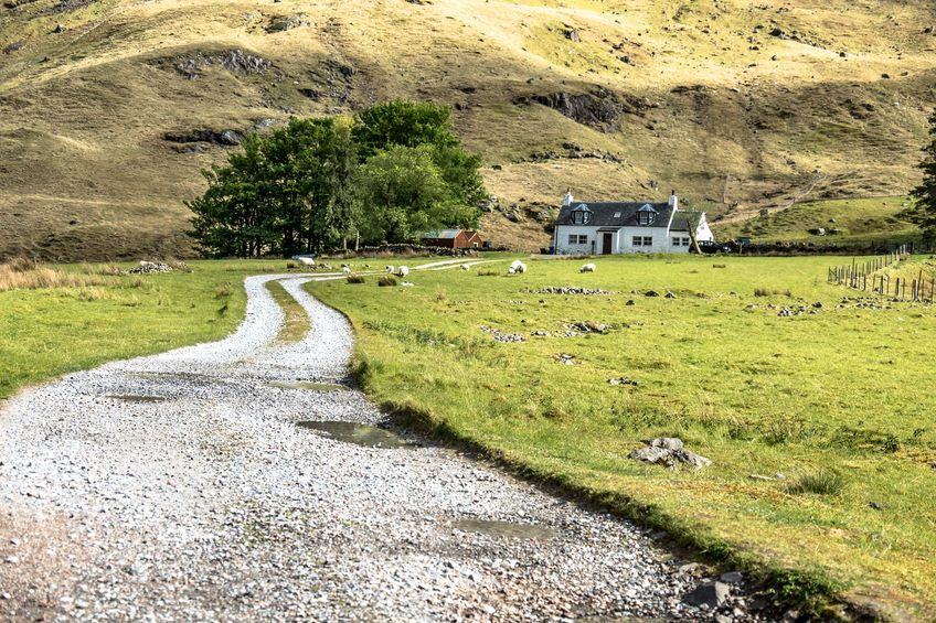 Payments worth £241m to arrive in Scots farmers' bank accounts