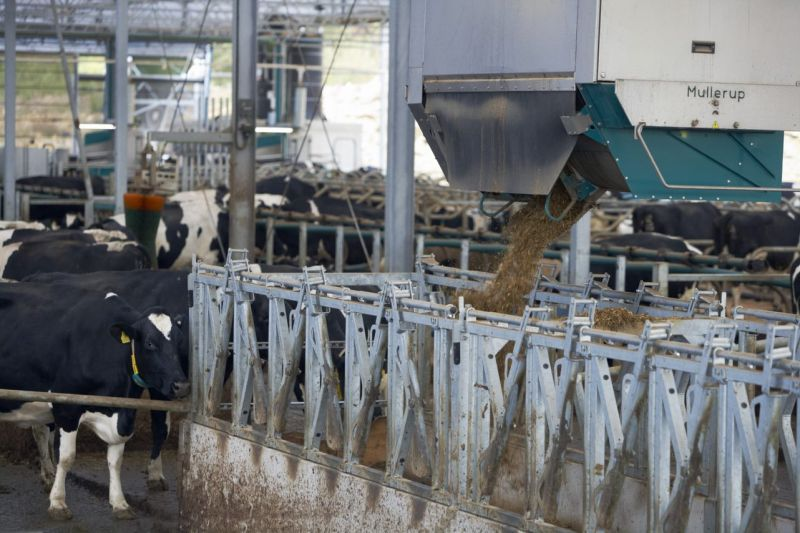 New £1.3m dairy centre to look at futuristic milk production