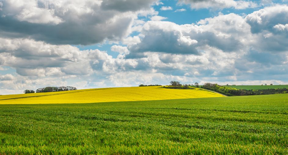 Farmland volumes in England highest for 10 years