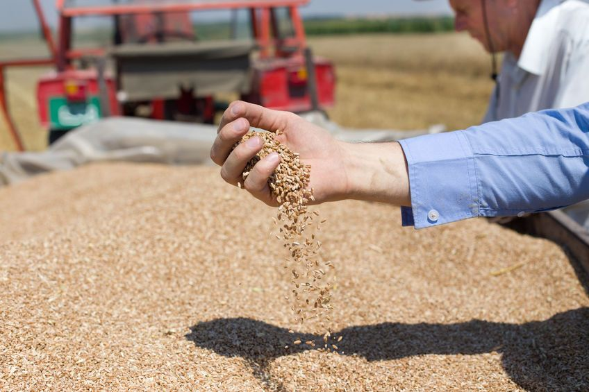 Survey launched to measure farmers' levels of business confidence