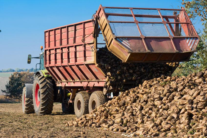 Growers left 'frustrated' after British Sugar takes down online portal