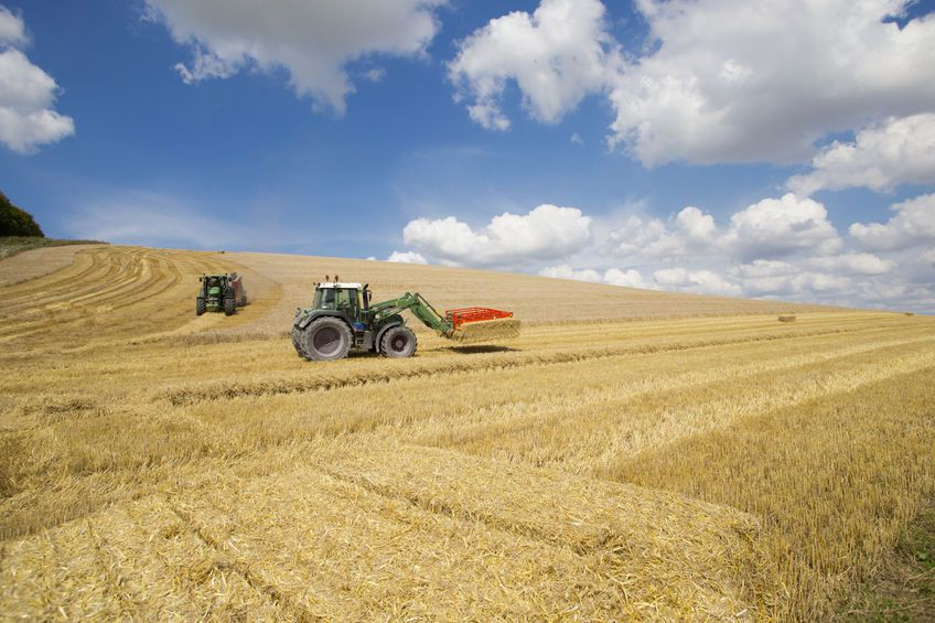 Farmers call for 'urgent action' to improve agricultural tenancies