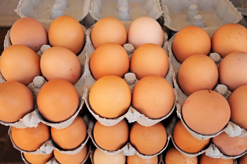 The EFSA concluded that the probability of infection was 'negligible' for both raw table eggs and raw poultry meat