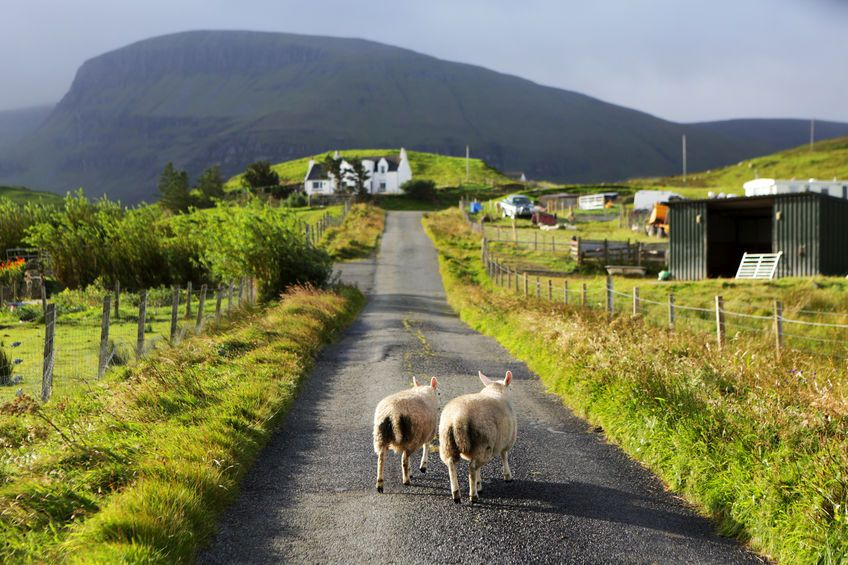 Boost for remote Highland farmers as micro-abattoir project edges closer