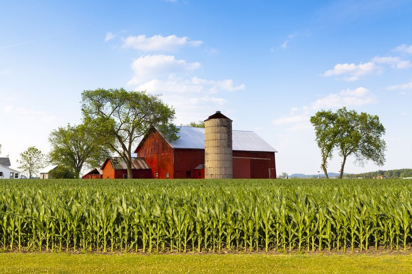 US farmers call out EU for 'shameful' resistance to agricultural trade